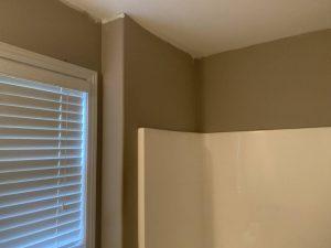 interior-painting-calhoun-before (4)